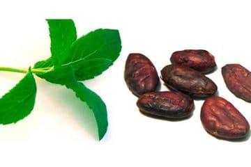 Ritual exfoliación menta-cacao. Despierta la mente y reactivate